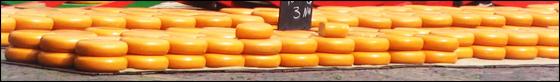 Kaas race Alkmaar